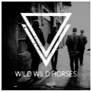 Wild Wild Horses 歌手頭像