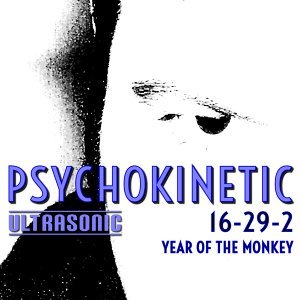 Psychokinetic 歌手頭像