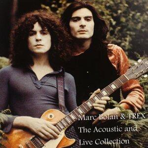 Marc Bolan & Trex 歌手頭像