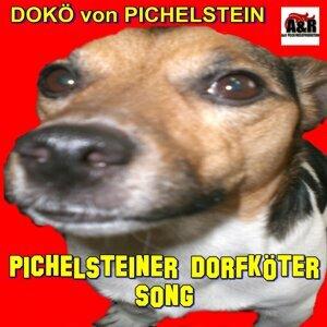 DOKÖ von Pichelstein 歌手頭像