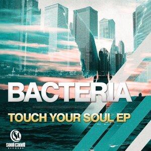 Bacteria 歌手頭像