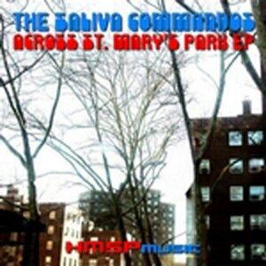 The Saliva Commandos 歌手頭像