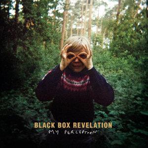 Black Box Revelation 歌手頭像