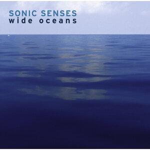 Sonic Senses 歌手頭像