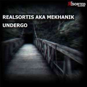 Realsortis Aka Mekhanik 歌手頭像