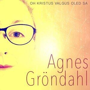 Agnes Gröndahl 歌手頭像