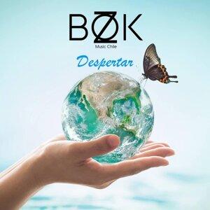 Bokz 歌手頭像