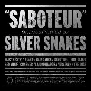 Silver Snakes 歌手頭像