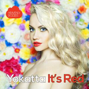Yokatta 歌手頭像