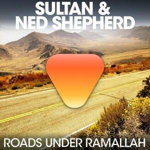 Sultan & Ned Shepard 歌手頭像