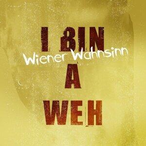 Wiener Wahnsinn 歌手頭像