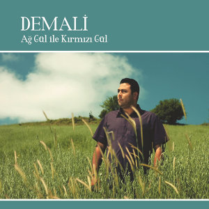 Demali 歌手頭像
