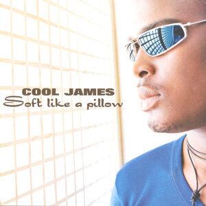 Cool James 歌手頭像