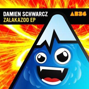 Damien Schwarcz 歌手頭像