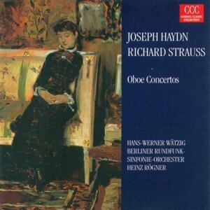 Heinz Rogner, Berlin Radio Symphony Orchestra, Hans-Werner Watzig 歌手頭像