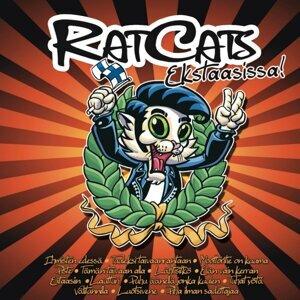 Rat Cats 歌手頭像