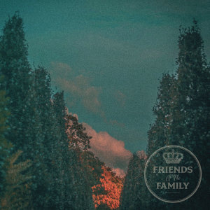 Friends Of The Family 歌手頭像