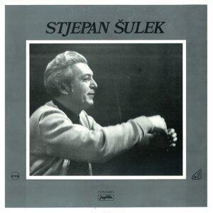 Stjepan Sulek 歌手頭像