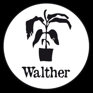 Walther 歌手頭像