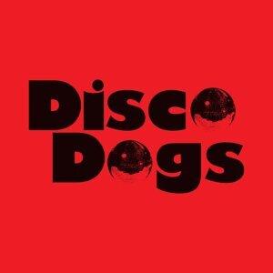 Disco Dogs 歌手頭像