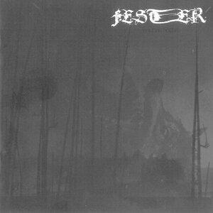 Fester 歌手頭像