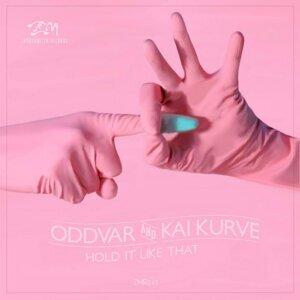 Kai Kurve & Oddvar 歌手頭像