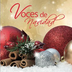 Coro Infantiles Voces De Belem 歌手頭像