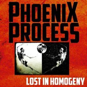 Phoenix Process 歌手頭像