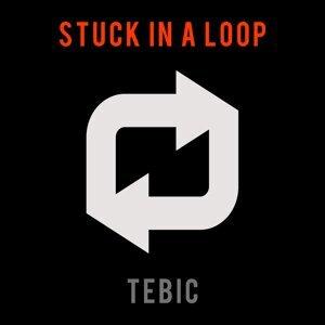 Tebic 歌手頭像