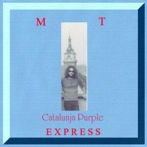 M.T. EXPRESS 歌手頭像