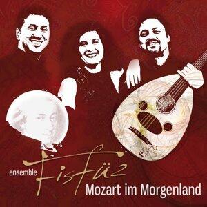 Ensemble FisFüz 歌手頭像
