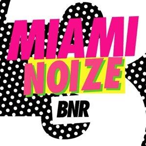 BNR presents, BNR 歌手頭像