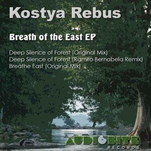 Kostya Rebus 歌手頭像