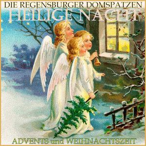 Die Regenburger Domspatzen 歌手頭像