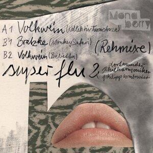 Super Flu feat. Dortmunder Philharmoniker & Philipp Armbruster 歌手頭像