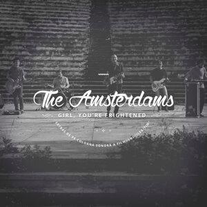The Amsterdams 歌手頭像
