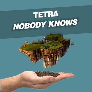 Tetra 歌手頭像
