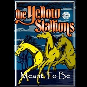 The Yellow Stallions 歌手頭像
