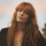 Florence + The Machine (芙蘿倫絲機進份子) 歌手頭像