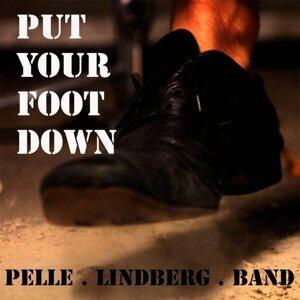 Pelle Lindberg Band 歌手頭像