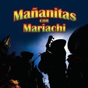 Mariachi Vallarta 歌手頭像
