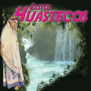 Los Grandes Huastecos 歌手頭像