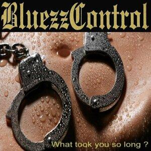 BluezzControl 歌手頭像