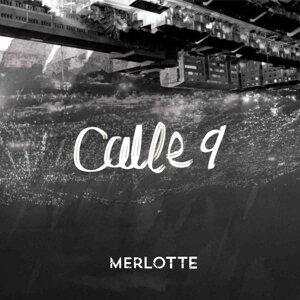 Merlotte 歌手頭像