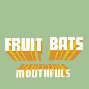 Fruit Bats 歌手頭像