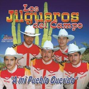 Los Jilgueros Del Campo 歌手頭像