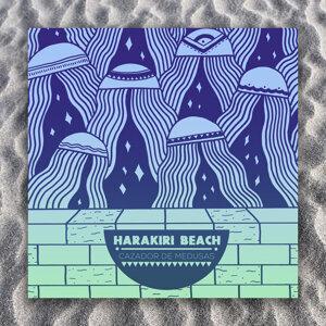 Harakiri Beach 歌手頭像