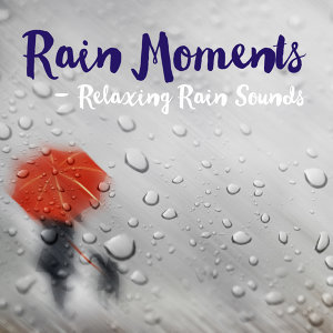 Rain Moments 歌手頭像
