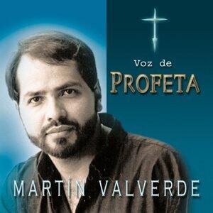 Martín Valverde 歌手頭像