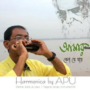 Apu Harmonica 歌手頭像